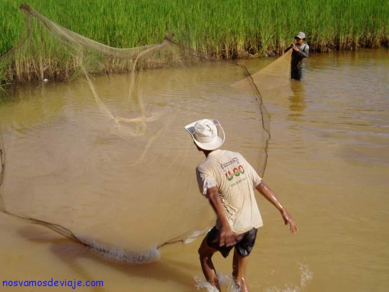 Vida cotidiana dentro de Angkor