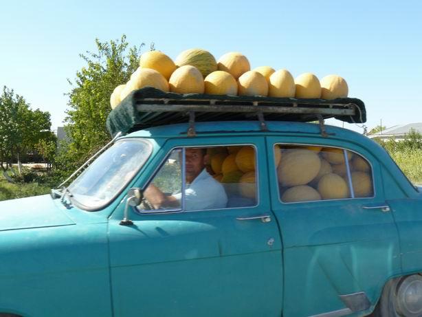Transportando las frutas de temporada