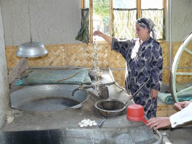 Sacando la seda de los capullos