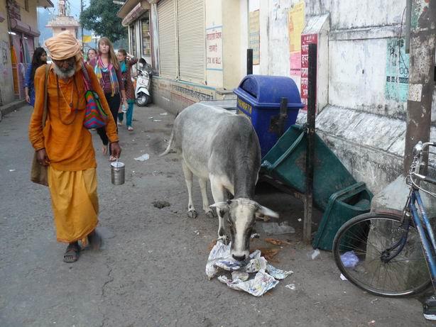 Calle de Rishikesh