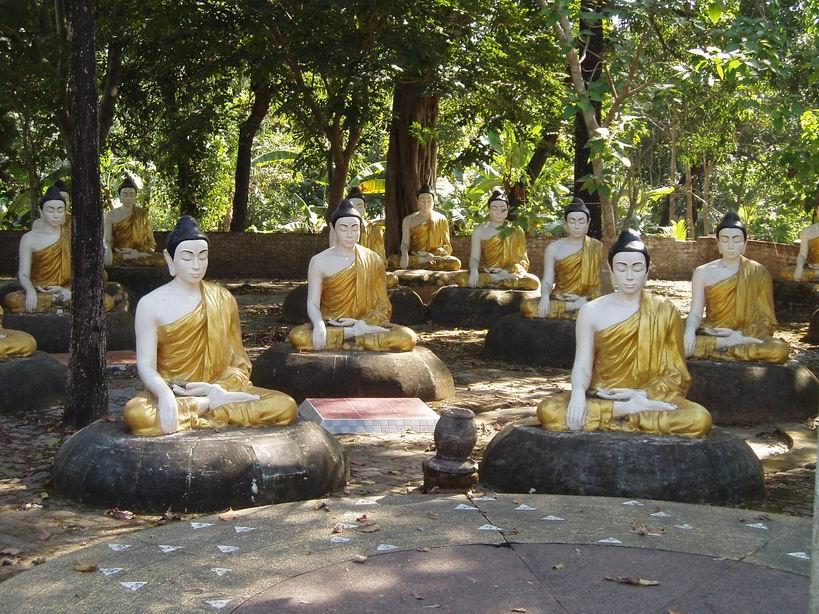 Budas en Bago