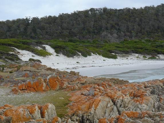 Friendly Beach en Freycinet