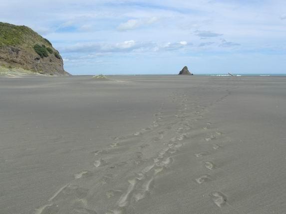 Playa de Karekare, escenario de la película el piano