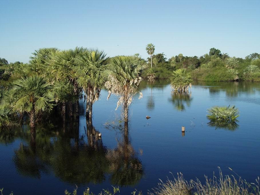 Paisaje del Chaco, Paraguay