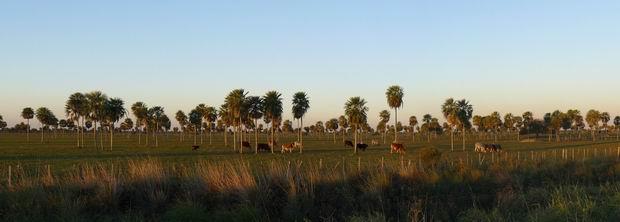 El Chaco paraguayo