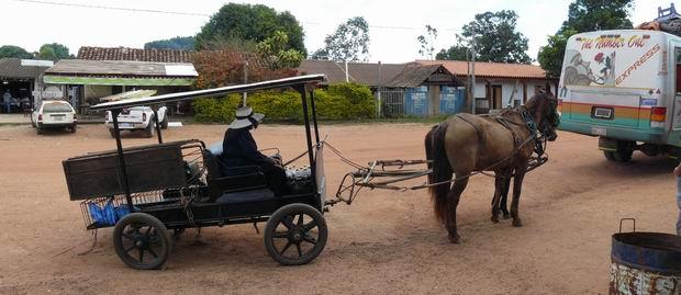 Transporte menonita