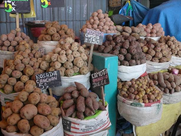 Variedades de patatas en Arequipa