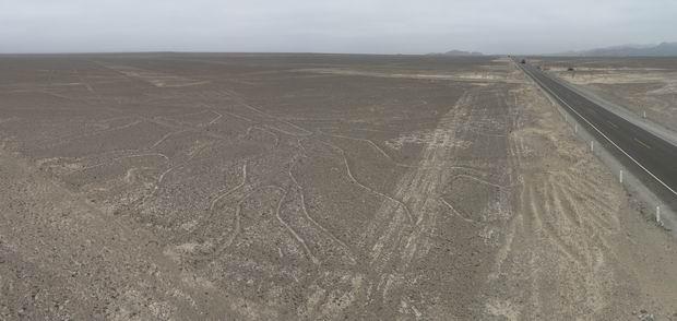 El árbol, una de las líneas de Nazca