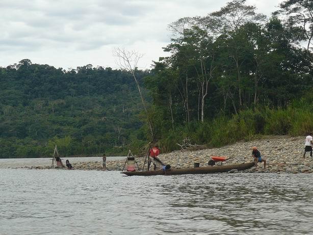 Buscando oro en el río Napo