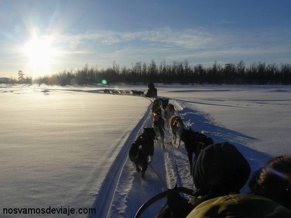 Puesta de sol en trineo con los perros
