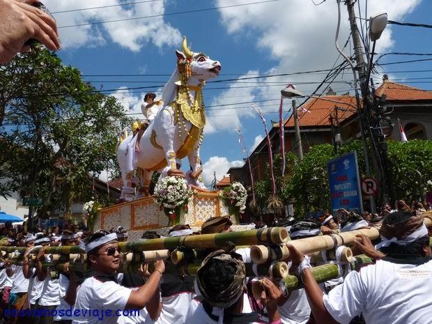cabalgando el toro al lugar de la cremacion