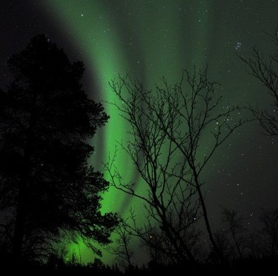 aurora en kirkenes
