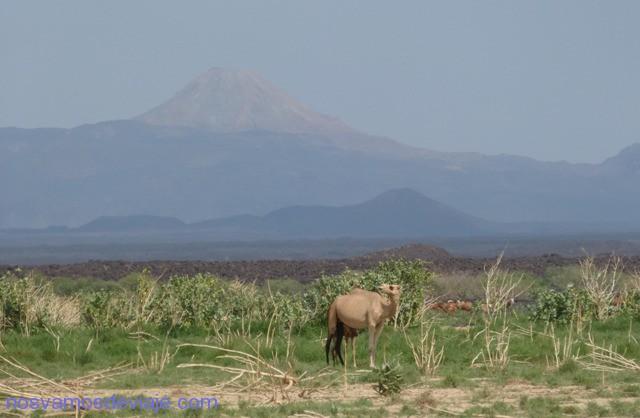 Volcanes del Danakil