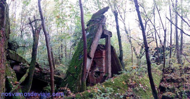restos-entre-el-bosque